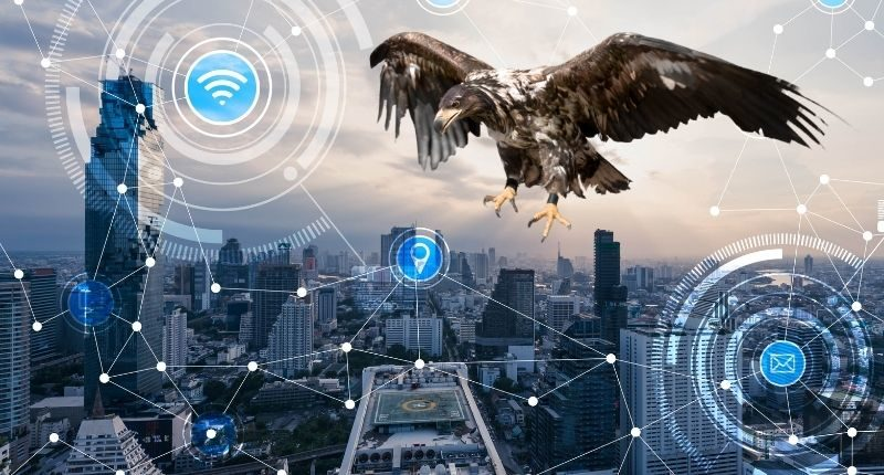 Eagle Software Proptech Group